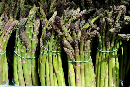 Organic asparagus from Alvarez Organic Farms. Photo copyright 2012 by Zachary D. Lyons.