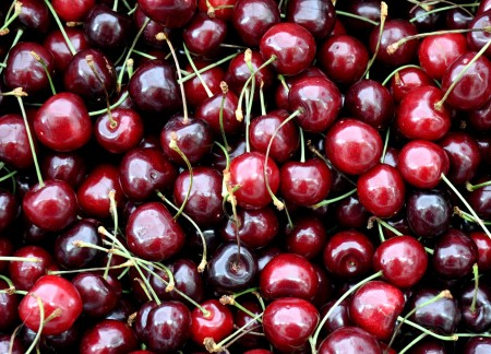 Bing cherries from Martin Family Orchards. Photo copyright 2012 by Zachary D. Lyons.