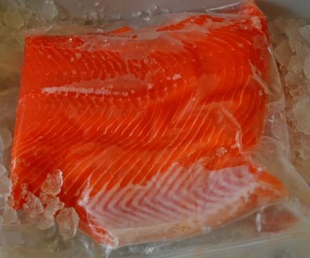 Wild Washington red king salmon from Wilson Fish at Madrona Farmers Market. Copyright Zachary D. Lyons.