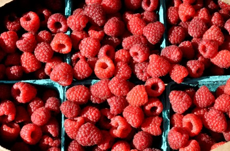 Late season raspberries from Gaia's Harmony Farm. Photo copyright 2013 by Zachary D. Lyons.