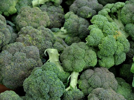 Broccoli from Kirsop Farm. Photo copyright 2013 by Zachary D. Lyons.