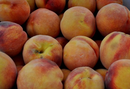 DH Hale peaches from Martin Family Orchards. Photo copyright 2013 by Zachary D. Lyons.