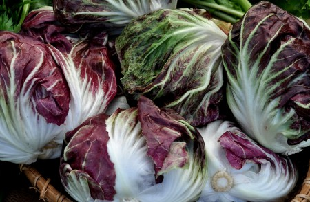 Chiogga radicchio from One Leaf Farm. Photo copyright 2013 by Zachary D. Lyons.