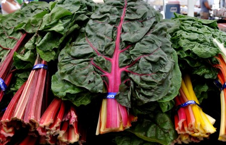 Rainbow chard from Kirsop Farm. Photo copyright 2014 by Zachary D. Lyons.