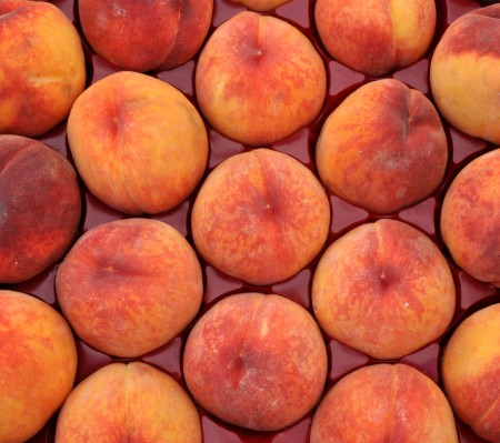 Early Red Haven peaches from Martin Family Orchards. Photo copyright 2014 by Zachary D. Lyons.