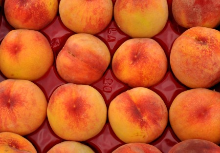 Rosa Hale peaches from Martin Family Orchards. Copyright Zachary D. Lyons.