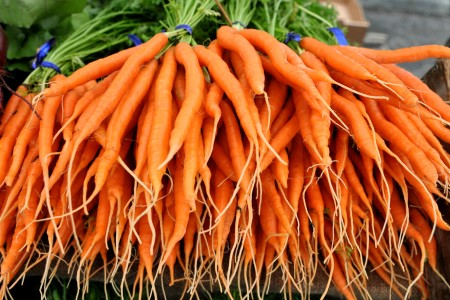 Sweet Snax carrots from One Leaf Farm. Copyright Zachary D, Lyons.
