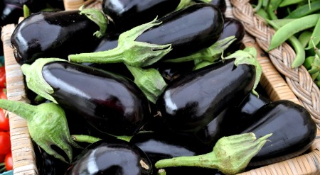 Eggplant from Tani Creek Farm. Copyright Zachary D, Lyons.
