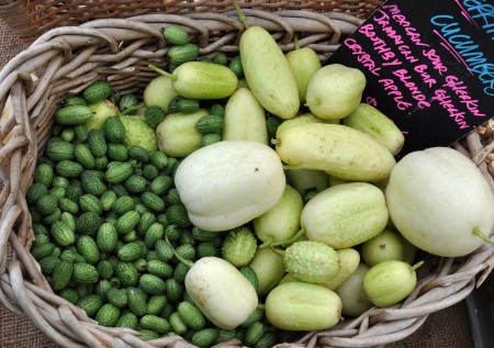 Heirloom cucumbers from Tani Creek Farm at Madrona Farmers Market. Copyright Zachary D. Lyons.