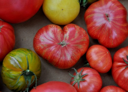 Thank you for supporting your Madrona Farmers Market this season! Copyright Zachary D. Lyons.