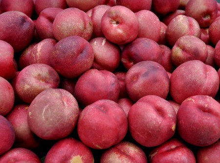 Nectarplums from Collins Family Orchards at Madrona Farmers Market. Copyright Zachary D. Lyons.
