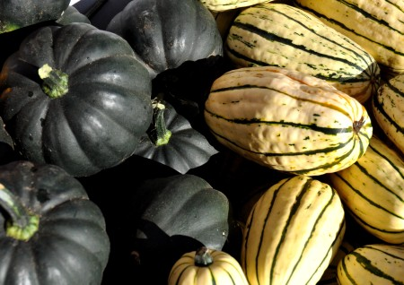 Winter squash from Kirsop Farm at Madrona Farmers Market. Copyright Zachary D. Lyons.